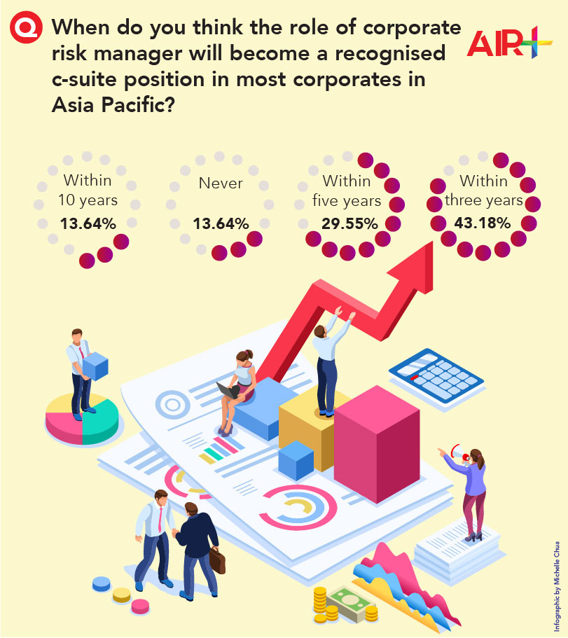 Risk manager role