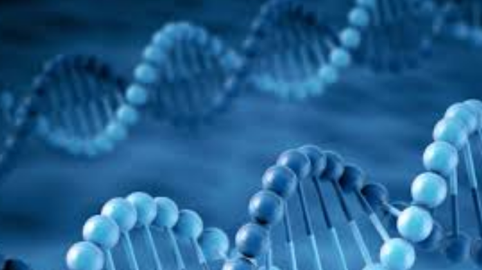 Global: Genetic testing provides huge opportunities for life insurers